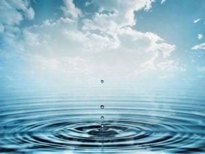 apa necalitativa