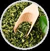 Extract ceaiului verde
